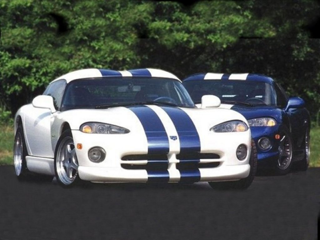 popular cars world Dodge Viper Venom 1000 Looking at things